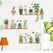 Мои любимые растения